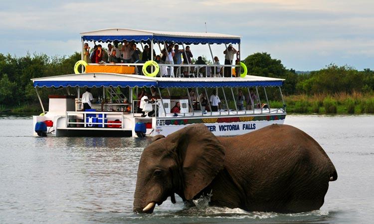Shearwater Zambezi River Cruise